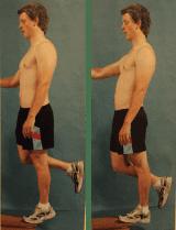 Tendinopathy Exercise one