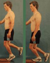 tendinopathy exercise two