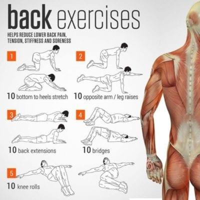 back-health-back-exercises